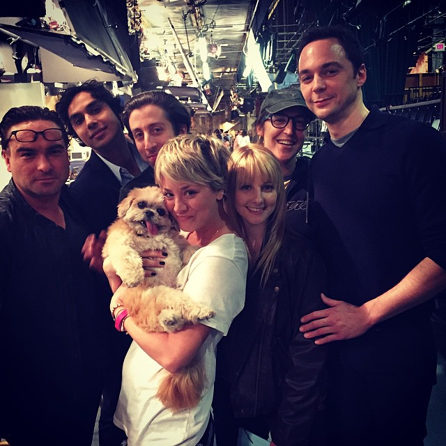 Marnie the dog et The Big Bang Theory
