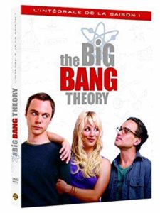 big bang theory saison 1